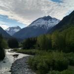 Alaska Juno