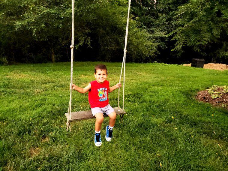 Solomon on a Swing