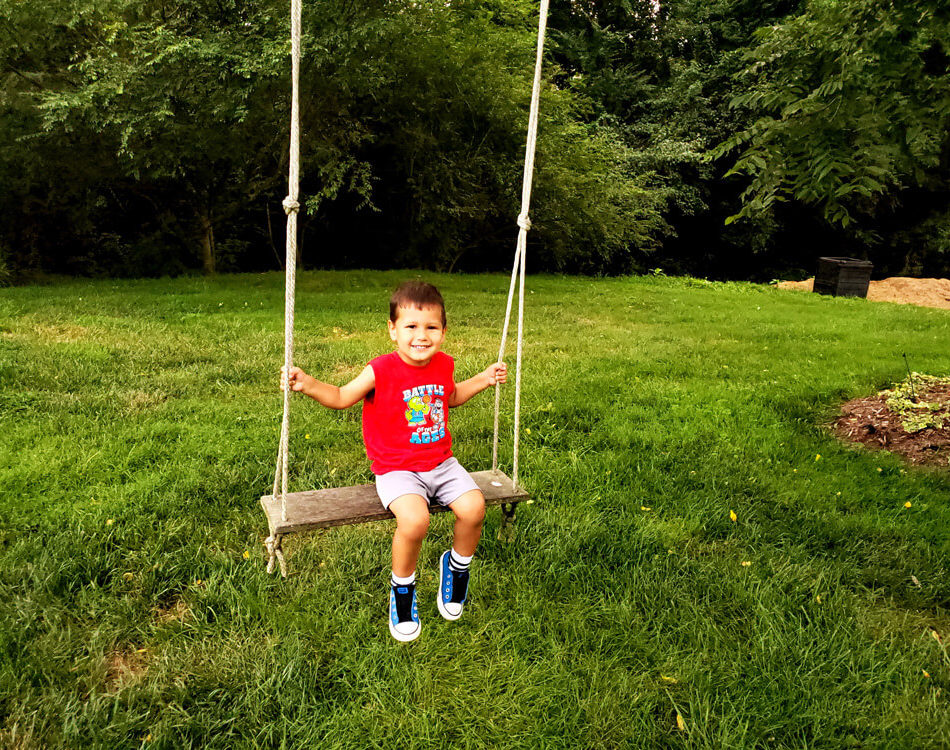 Solomon on a Swing