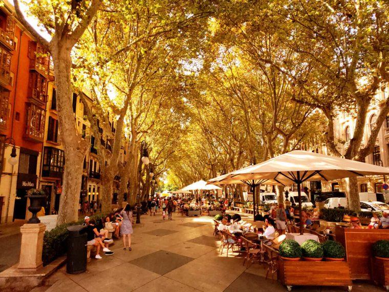Beautiful Shot in Spain