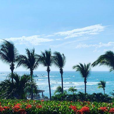Gorgeous Punta Mita view